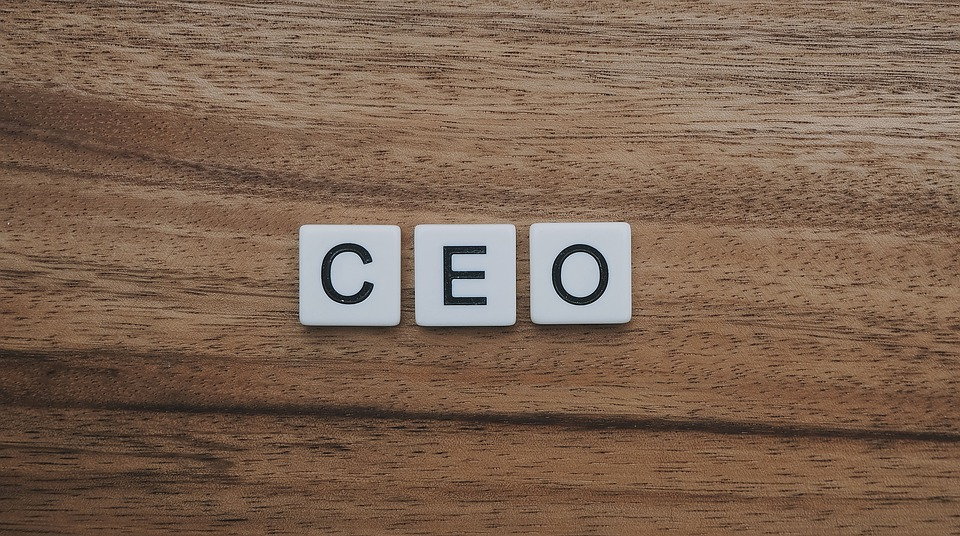 Is There a CEO In You
