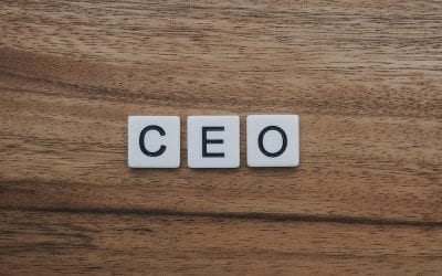 Is There a CEO In You?